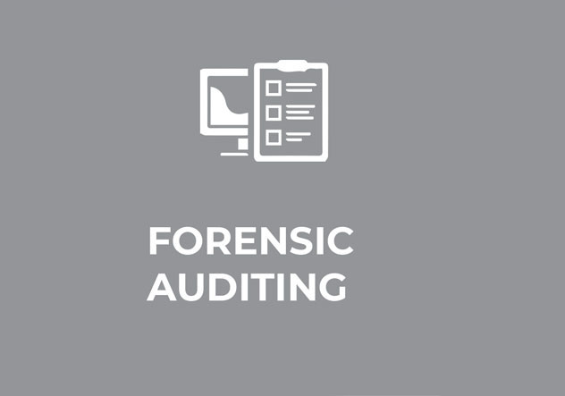 forensic-audit